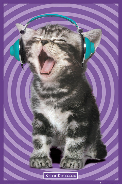 Keith Kimberlin Kitten Headphones Maxi Poster