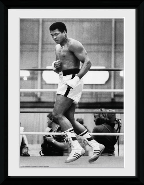 Muhammad Ali Training Framed Collector Print