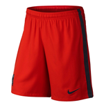 2014-2015 PSG Third Nike Football Shorts (Kids)