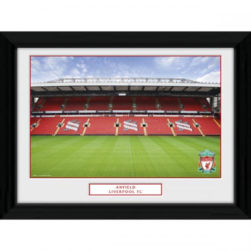 Liverpool F.C. Picture Anfield 16 x 12