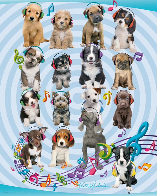 Keith Kimberlin Puppies Headphones 2 Mini Poster