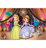 Sofia the First Puzzles 143027