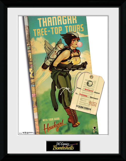 DC Comics Hawkgirl Framed Collector Print