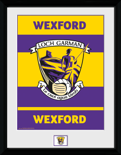 GAA Wexford Framed Collector Print