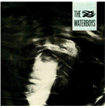 Vynil Waterboys (The) - The Waterboys