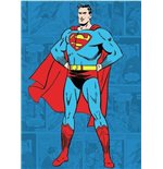 Superman Magnet 146493