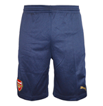 2015-2016 Arsenal Puma Training Shorts (Navy)