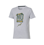 2015-2016 South Africa Springboks Graphic Tee (Grey)