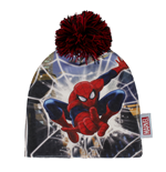 Spiderman Hat 179876