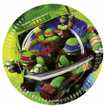 Ninja Turtles Parties Accessories 183542