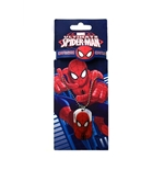 Spiderman Bracelet and Necklace