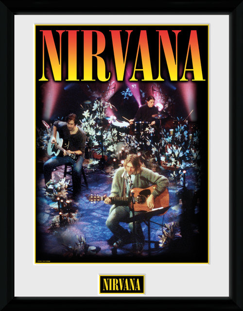 Nirvana Unplugged Framed Collector Print