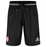 2016-2017 Denmark Adidas Training Shorts (Black)