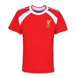 Official Liverpool Training T-Shirt (Red)