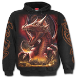 Awake The Dragon - Hoody Black