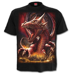Awake The Dragon - T-Shirt Black