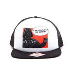 Star Wars - It Is Pointless to Resist Snapback