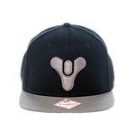 Destiny - Snapback with Embroided Logo