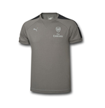 2016-2017 Arsenal Puma Casual Performance Tee (Grey)
