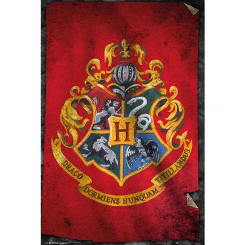 Harry Potter Poster Hogwarts 262