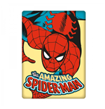 Spiderman Magnet 249272