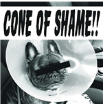 "Vynil Faith No More - Cone Of Shame Red (7"")"