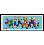 Dragon ball Print 253256