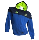Leinster Sweatshirt 254893