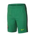 2016-2017 Barcelona Home Nike Goalkeeper Shorts (Lucid Green) - Kids