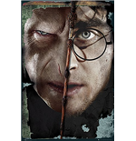 Harry Potter Poster 259347