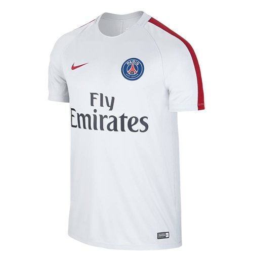 Buy Official 2016 2017 Psg Nike Training Shirt Wolf Grey