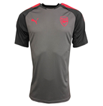 2017-2018 Arsenal Puma Training Jersey (Steel Grey) - Kids