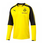 2017-2018 Borussia Dortmund Puma Training Sweat Top (Yellow) - Kids