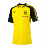2017-2018 Borussia Dortmund Puma Training Shirt (Yellow)