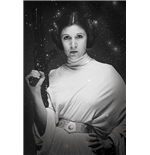 Star Wars Poster 271590