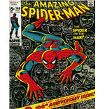 Spiderman Poster 271595
