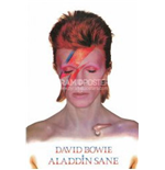 David Bowie Poster 271651