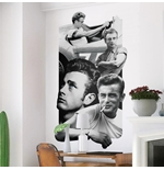 James Dean Wall Stickers 274637