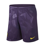 2017-2018 Tottenham Third Nike Football Shorts (Purple)