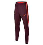 2017-2018 Barcelona Nike Training Pants (Night Maroon) - Kids