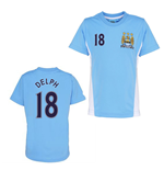Official Man City Training T-Shirt (Sky Blue) (Delph 18)