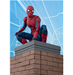 Spider-Man Homecoming S.H. Figuarts Action Figure Spider-Man & Tamashii Option Act Wall 15 cm