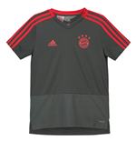 2018-2019 Bayern Munich Adidas Training Shirt (Utility Ivy) - Kids