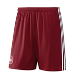 2016-2017 Denmark Home Adidas Football Shorts (Kids)