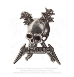 Metallica Pin Badge: Damage including skull