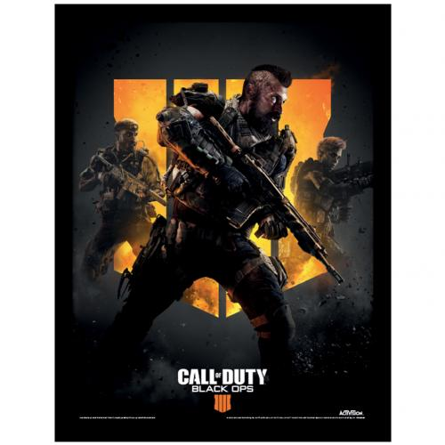 Call Of Duty Black Ops 4 Picture 16 x 12