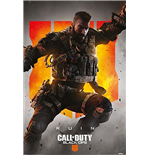 Call Of Duty Poster 387857