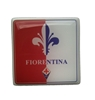 Fiorentina Wall Tie Magnet